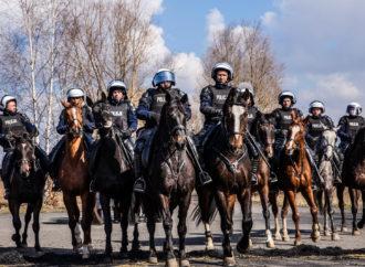 Oddział Policji Konnej zniknie z Chorzowa?