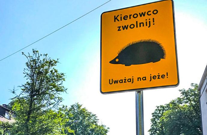 Nowe znaki na mieście. Bo jeż to dobry zwierz