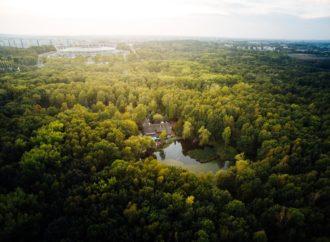 Chorzów jednym z najbardziej zielonych miast w Polsce