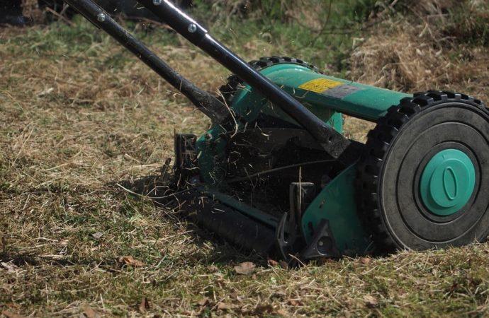 Przerwa w koszeniu trawy