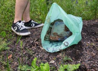 Kibice organizują ekologiczną akcję. Dołącz do sprzątania terenów zielonych