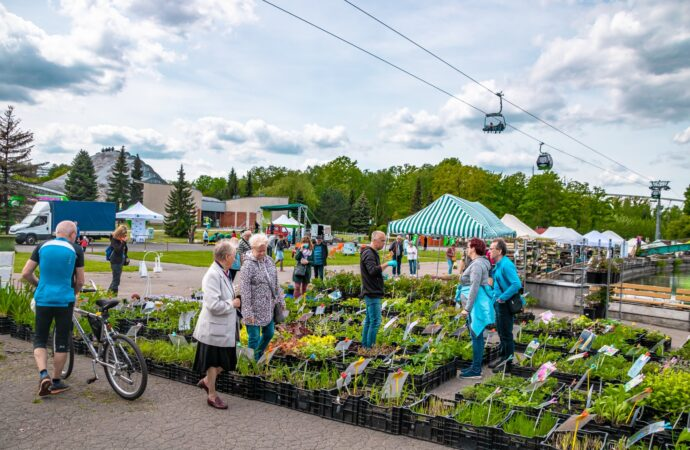 Święto miłośników roślin w Parku Śląskim