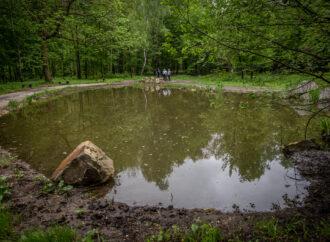 Kolejna część Parku Śląskiego zostanie zrewitalizowana