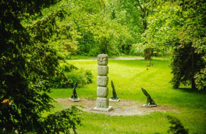 Wilki wróciły do Parku Śląskiego