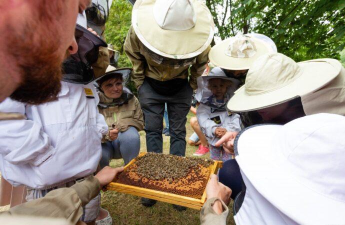 Święto miodu, pszczół i pszczelarzy