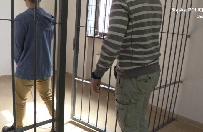 Gwałciciel z podkarpacia trafił do aresztu