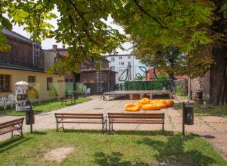 Piknik Mamy Klub w ogrodach SDK