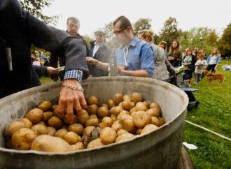 """Placki, pieczonka i śpiewy, czyli """"Dzień Kartofla"""" w Skansenie"""