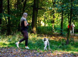 Park Śląski jeszcze bardziej przyjazny dla psów i ich właścicieli